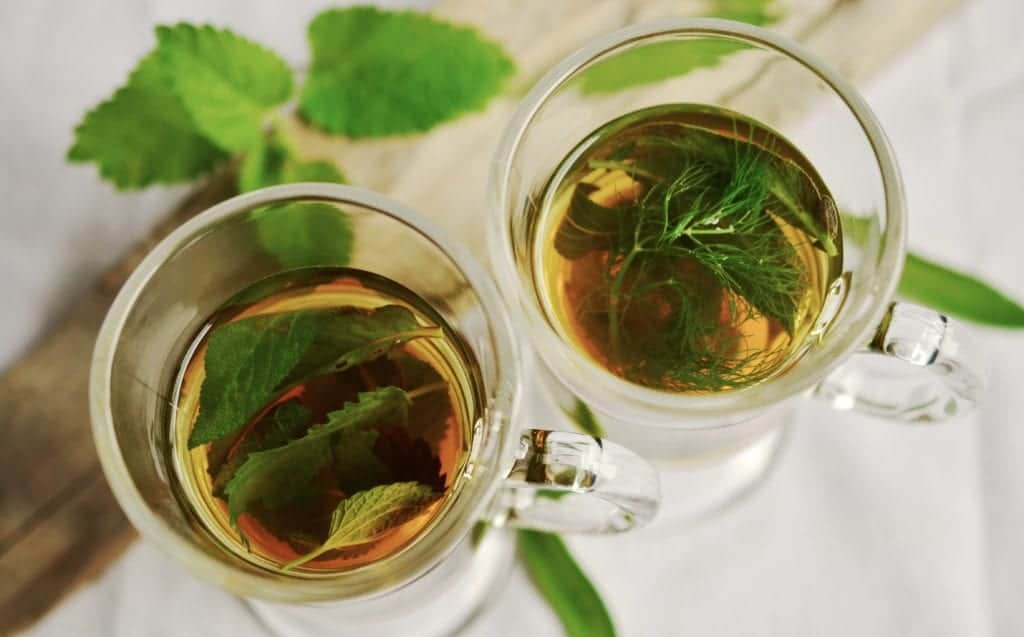 Mint Plant Care: Natural Uses Of Mint